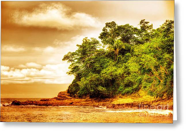 Manuel Greeting Cards - Sunset on the beach of Costa Rica Greeting Card by Anna Omelchenko