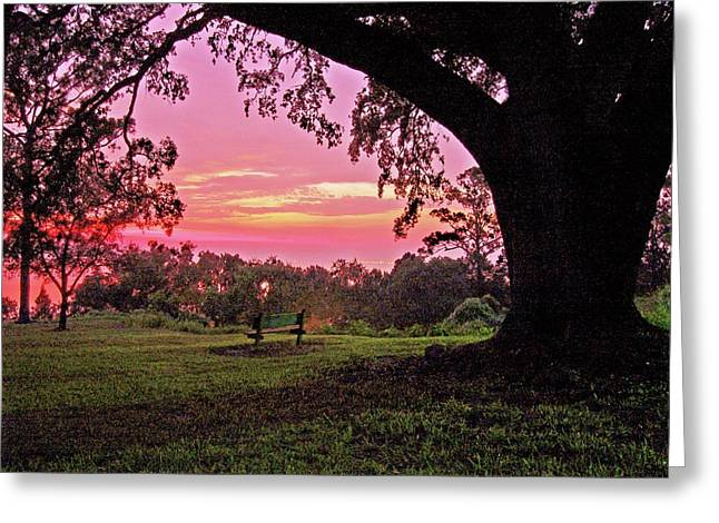 Crimson Tide Greeting Cards - Sunset on the Bench Greeting Card by Michael Thomas
