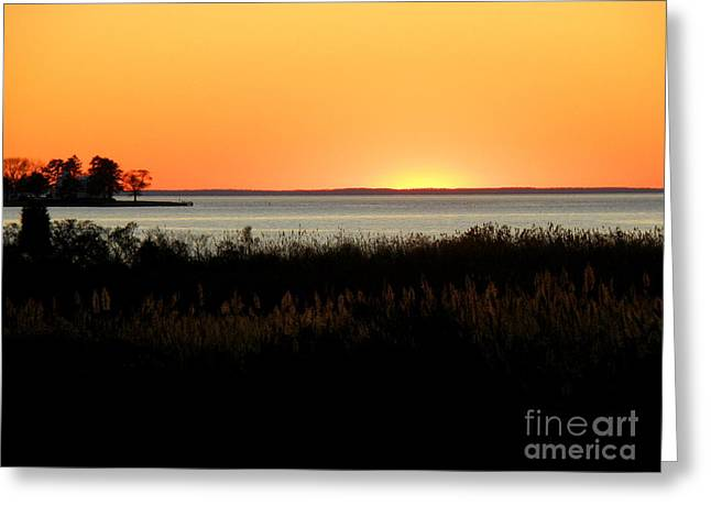 Lainie Wrightson Greeting Cards - Sunset on the Chesapeake Greeting Card by Lainie Wrightson