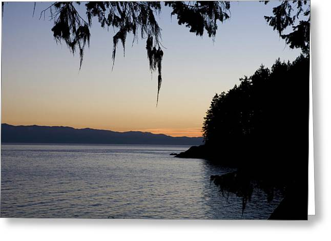 Shoreline Old Men Greeting Cards - Sunset On The Pacific Coast Greeting Card by Taylor S. Kennedy