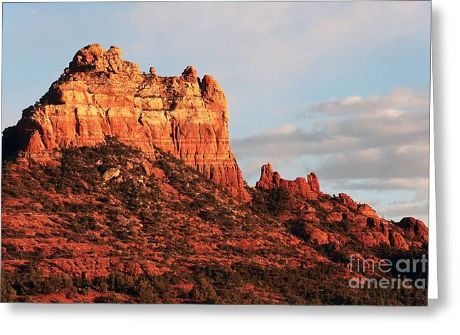 Coconino National Forest Greeting Cards - Sunset on the Red Rocks Greeting Card by John Rizzuto