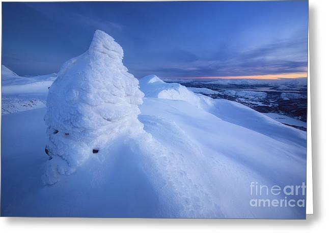 Sunset In Norway Greeting Cards - Sunset On The Summit Toviktinden Greeting Card by Arild Heitmann