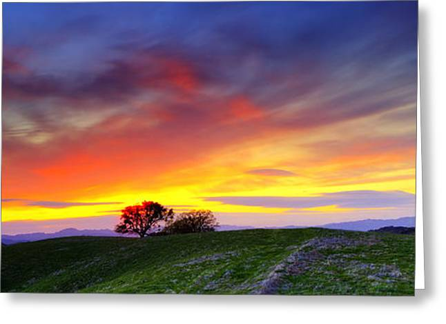Concord Greeting Cards - Sunset on top of Hillock 6x17 Pano Greeting Card by Laszlo Rekasi