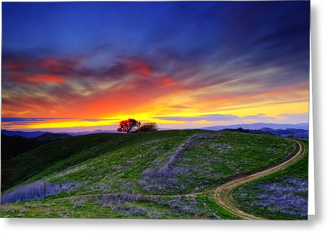 Walnut Tree Photograph Greeting Cards - Sunset on top of Hillock Greeting Card by Laszlo Rekasi