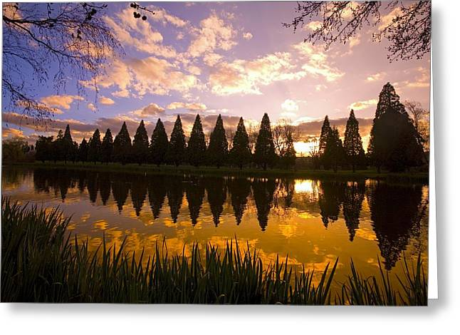 Best Sellers -  - State Parks In Oregon Greeting Cards - Sunset Reflection In A Park Pond Greeting Card by Craig Tuttle