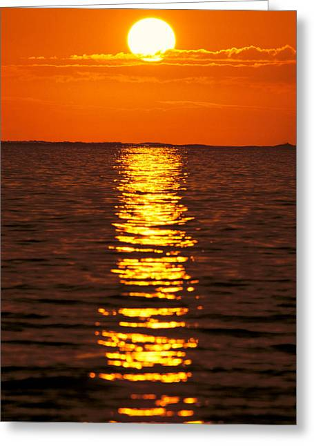 Amazing Sunset Greeting Cards - Sunset Reflections Greeting Card by Tomas del Amo - Printscapes