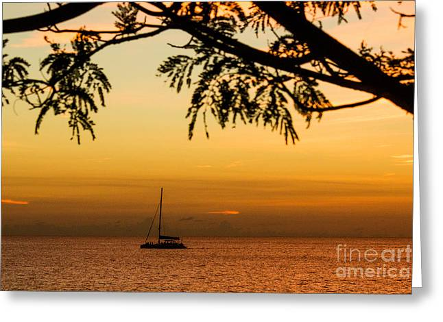 Sunset Sail Greeting Card by Rene Triay Photography