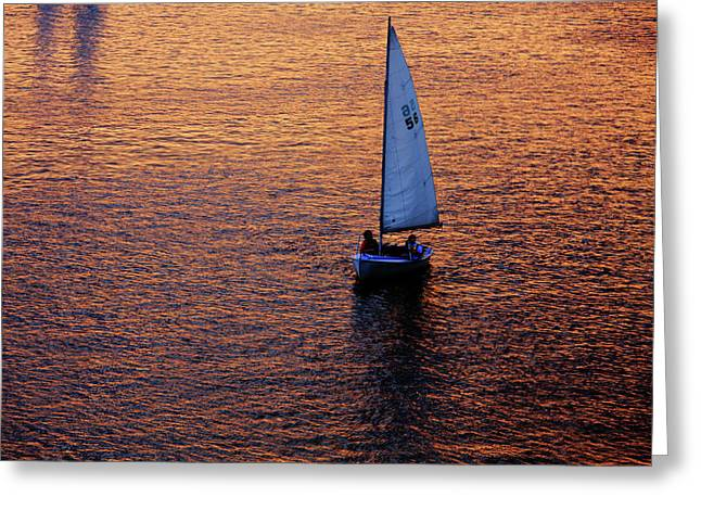 Yacht Club Greeting Cards - Sunset Sailing Greeting Card by Rick Berk