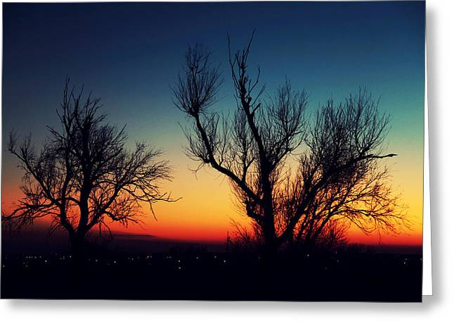 Sunset Greeting Cards Greeting Cards - Sunset silhouette Greeting Card by Toni Hopper