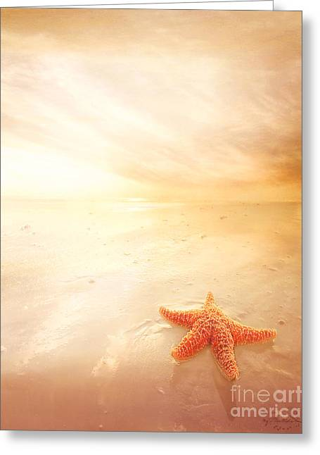 Star Fish Digital Greeting Cards - Sunset Star Fish Greeting Card by Lee-Anne Rafferty-Evans