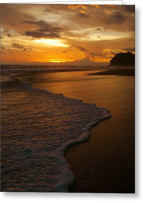 Surf Silhouette Greeting Cards - Sunset Surf Playa Hermosa Costa Rica Greeting Card by Michelle Wiarda