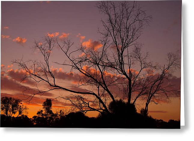 Alcoa Greeting Cards - Sunset Through Filagree Greeting Card by Heather Thorning