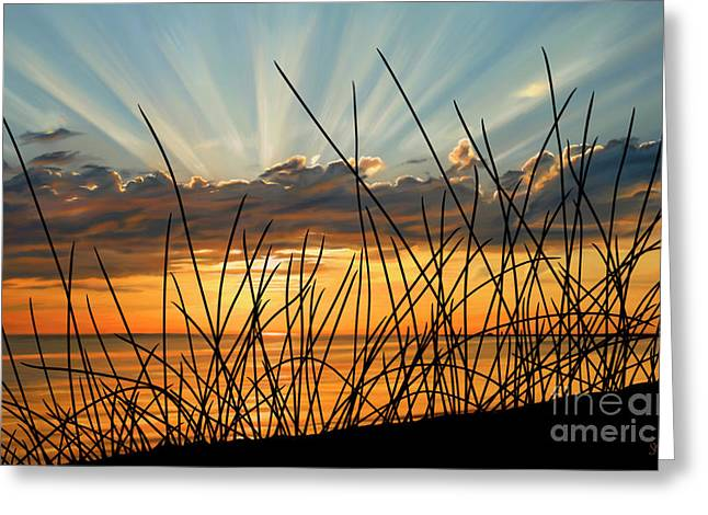 Sue Brehant Greeting Cards - Sunset Thru the Grass Greeting Card by Sue  Brehant