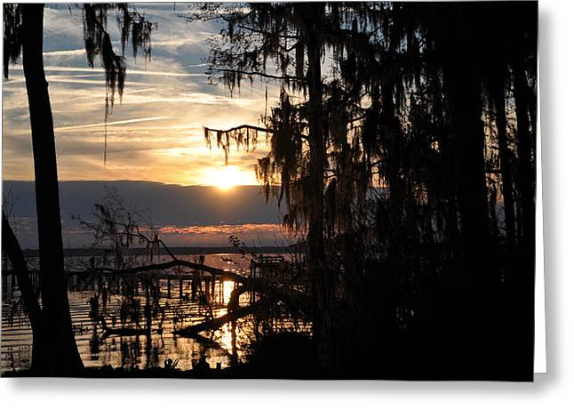 Sunset View Greeting Card by Tiffney Heaning