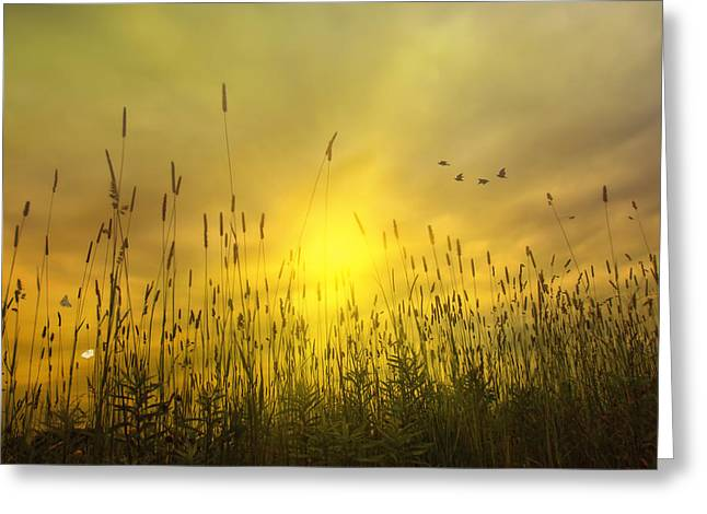 """sunset Photography"" Greeting Cards - Sunsets To Remember Greeting Card by Tom York Images"