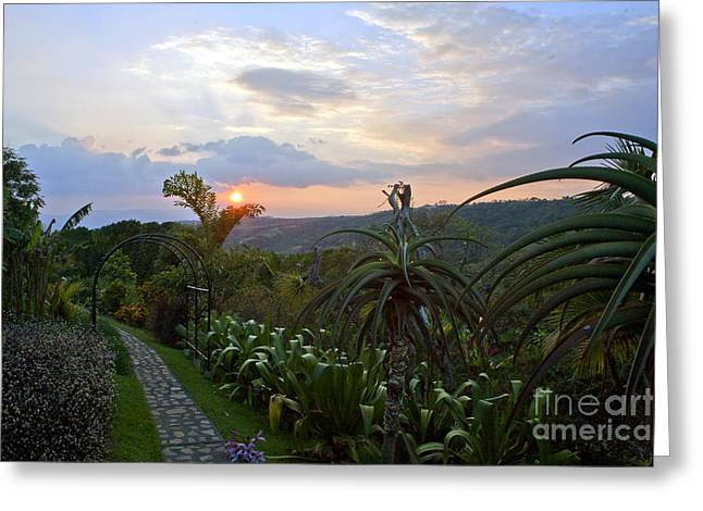 Costa Greeting Cards - Sunsetting Over Costa Rica Greeting Card by Madeline Ellis