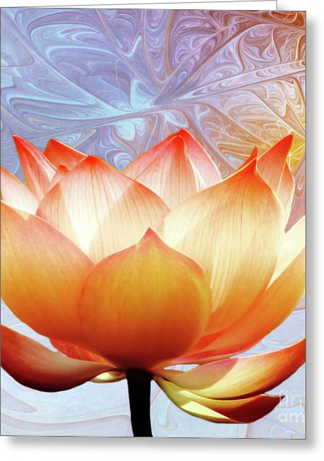 Photodream Greeting Cards - Sunshine Lotus Greeting Card by Photodream Art
