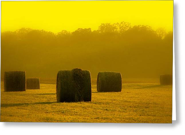 Indiana Landscapes Digital Art Greeting Cards - Sunshine Rolls Greeting Card by Ed Smith