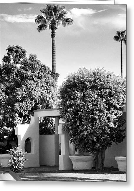 Palm Springs Life Greeting Cards - SUNTAN LANE Palm Springs Greeting Card by William Dey