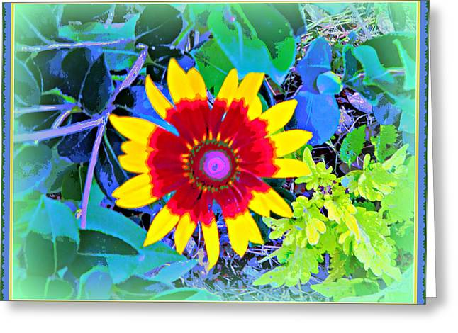 Floral Photographs Digital Greeting Cards - Super Daisy Greeting Card by Mindy Newman