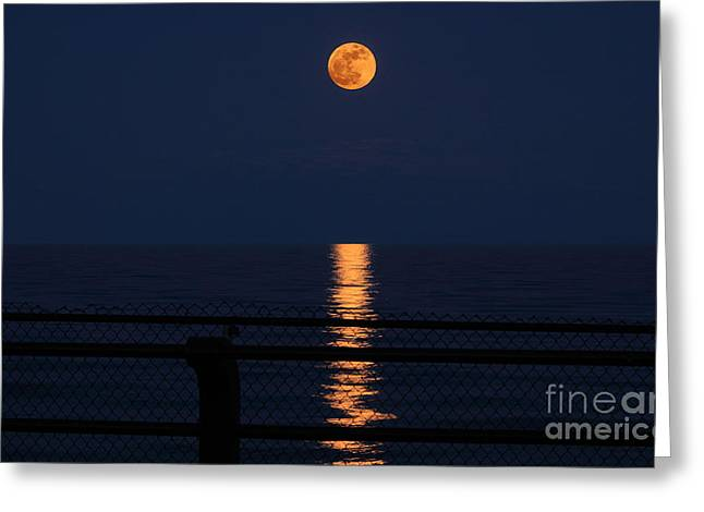 Moon Rise Greeting Cards - Super Moon Rising Greeting Card by Charline Xia