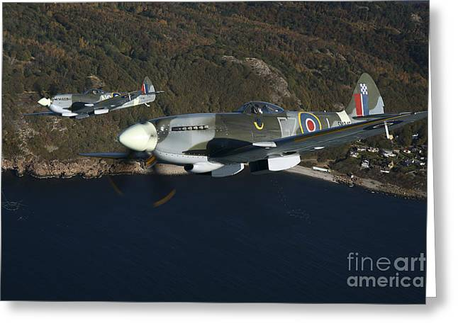 Xvi Greeting Cards - Supermarine Spitfire Mk. Xviii And Mk Greeting Card by Daniel Karlsson