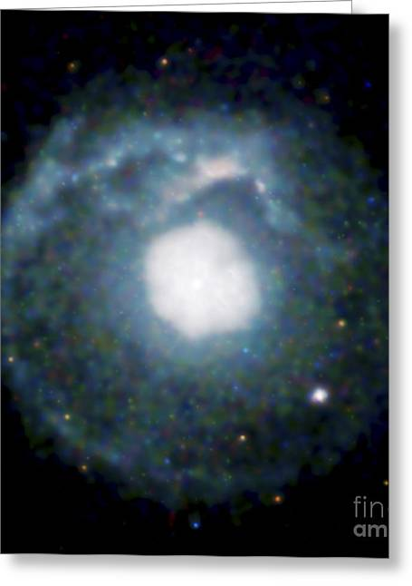 21st Greeting Cards - Supernova Remnant G215-0.9, Chandra Greeting Card by NASA / Science Source