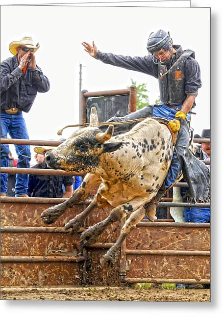 Bull Riders Greeting Cards - Support from the Sidelines Greeting Card by Ron  McGinnis