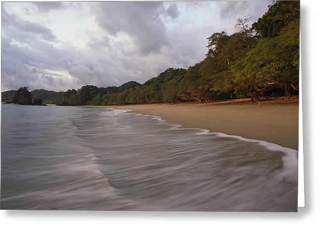 Manuel Greeting Cards - Surf Breaks On The Beach In Costa Ricas Greeting Card by Skip Brown