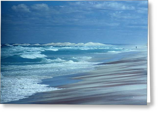 Israelite Greeting Cards - Surf Pounds The Beach At Israelite Bay Greeting Card by Sam Abell