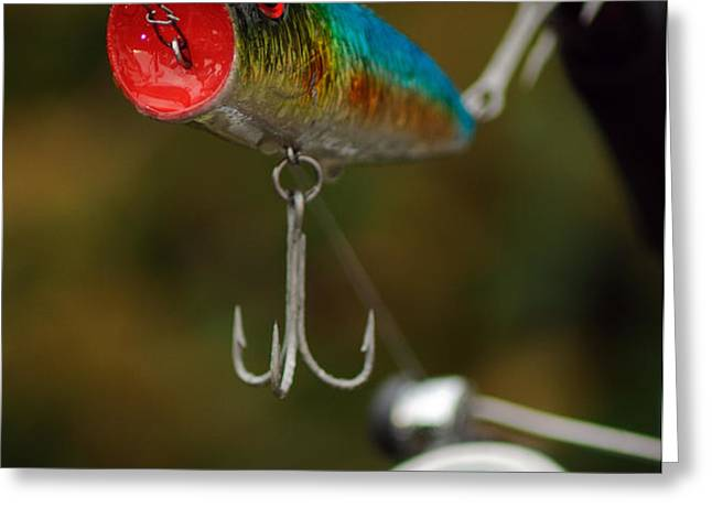 Surface Lure Greeting Card by Paul Holman