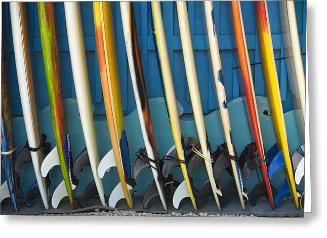 Surfing Art Greeting Cards - Surfboards Greeting Card by Dana Edmunds - Printscapes