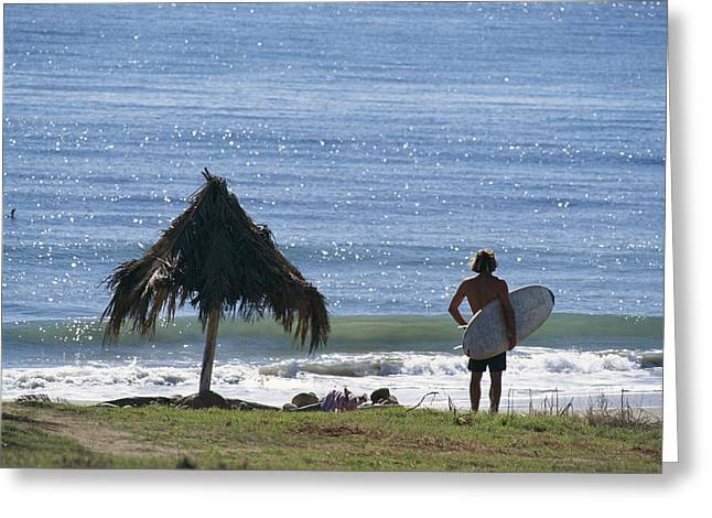 Beach Model Greeting Cards - Surfer At Hammonds Beach Stands Greeting Card by Rich Reid