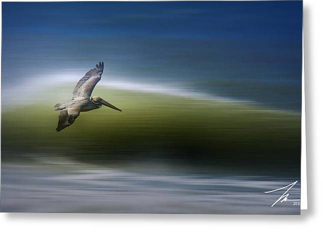Pelican Greeting Cards - Surfing Pelican Greeting Card by Steve Munch