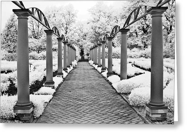 Infrared Fine Art Greeting Cards - Surreal Cranbrook Estates - Michigan Garden Greeting Card by Kathy Fornal