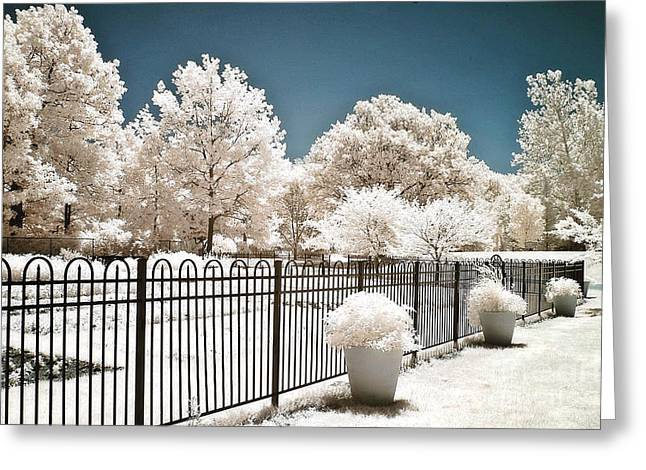 Surreal Infrared Dreamy Landscape Greeting Cards - Surreal Dreamy Color Infrared Nature and Fence  Greeting Card by Kathy Fornal