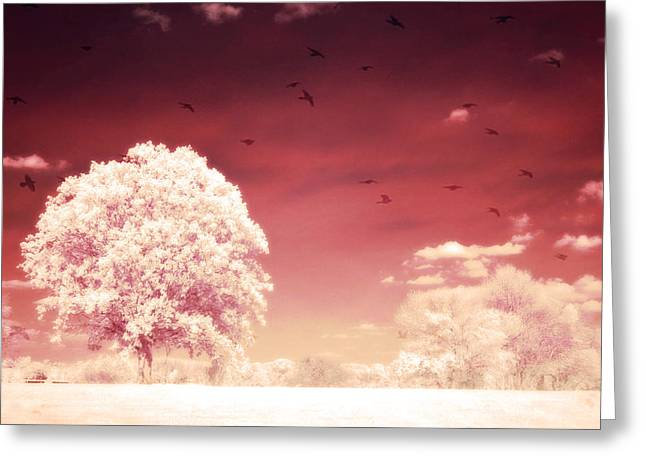 Nature Photographs Infrared Greeting Cards - Surreal Fantasy Dreamy Infrared Nature Landscape Greeting Card by Kathy Fornal
