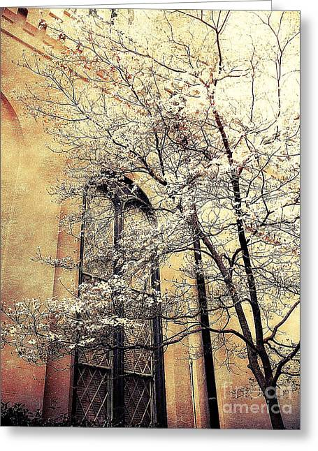 Fantasy Surreal Fine Art By Kathy Fornal Greeting Cards - Surreal Gothic Church Window With Fall Tree Greeting Card by Kathy Fornal