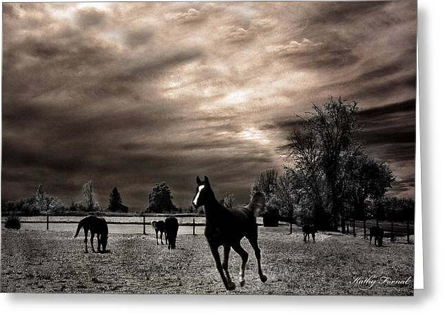 Surreal Fantasy Horse Fine Art Greeting Cards - Surreal Horses Infrared Nature  Greeting Card by Kathy Fornal