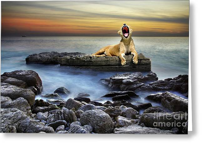 Feline Fantasy Greeting Cards - Surreal lioness Greeting Card by Carlos Caetano