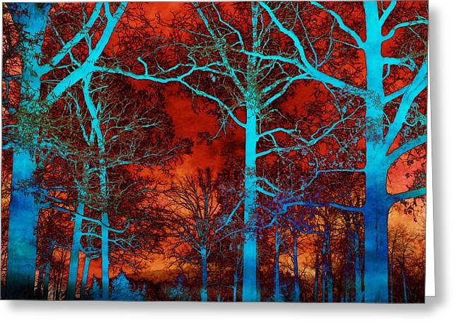 Fantasy Tree Art Greeting Cards - Surreal Orange Sky With Blue Trees Landscape Greeting Card by Kathy Fornal