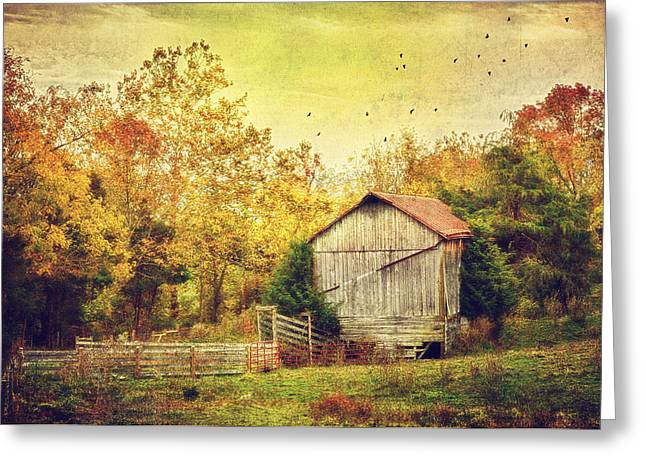 Barn Landscape Photographs Greeting Cards - Surrounded By Fall Greeting Card by Kathy Jennings