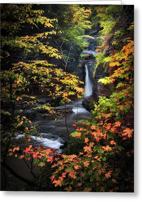Ithaca Greeting Cards - Surrounded by Fall Greeting Card by Neil Shapiro