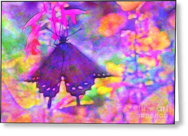 Swallowtail Greeting Card by Judi Bagwell