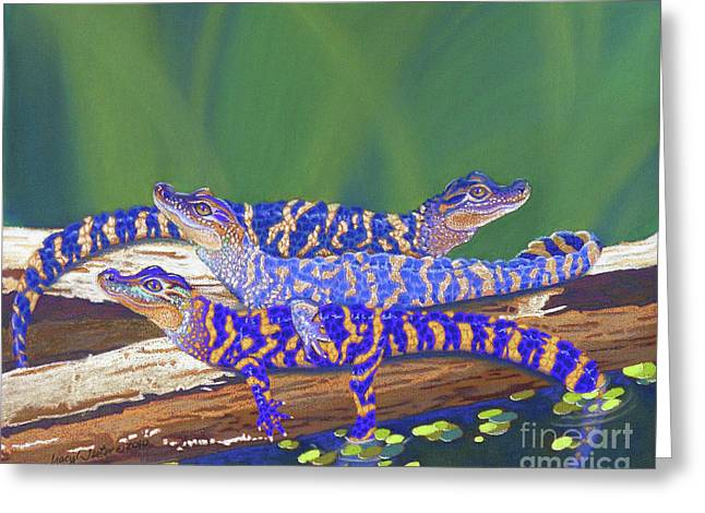 Louisiana Alligator Greeting Cards - Swamp Babies Greeting Card by Tracy L Teeter