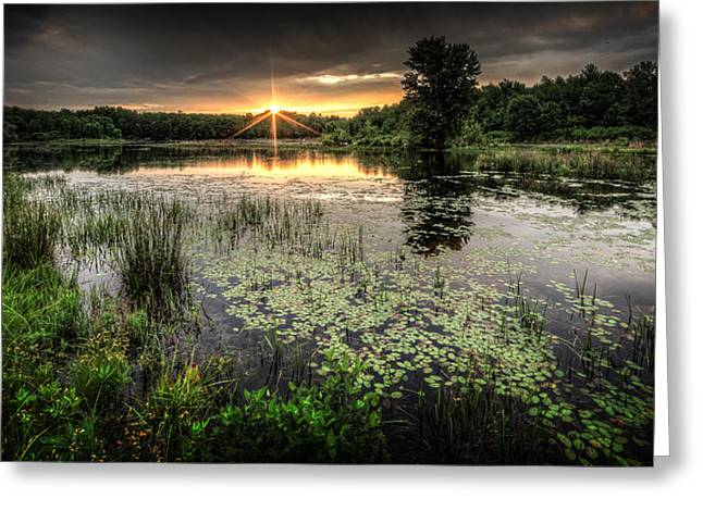 Sunrise. Water Greeting Cards - Swamp Sunrise Greeting Card by Everet Regal
