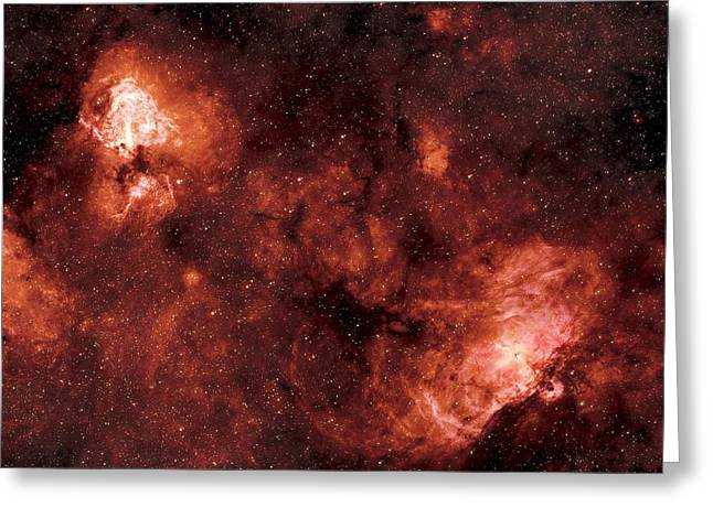 Swan And Eagle Nebulae Greeting Card by Dr Luke Dodd