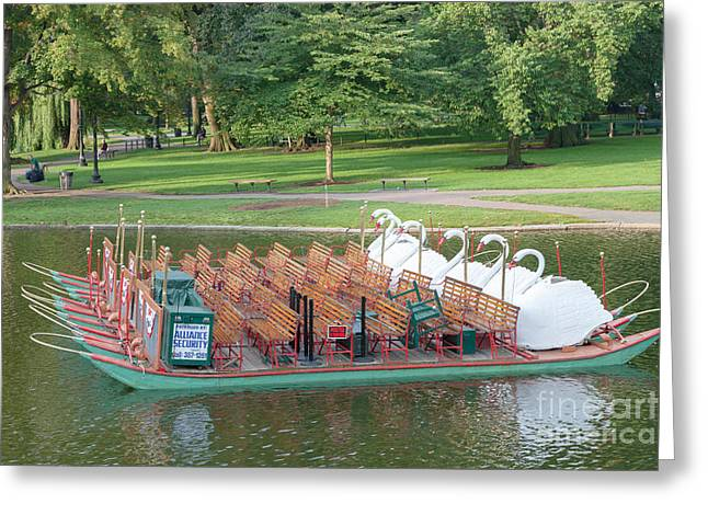 Swan Boat In Boston Public Garden Greeting Card by Clarence Holmes