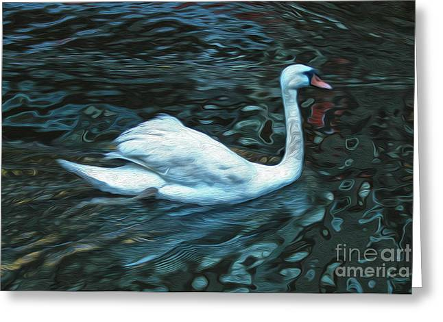 Swan Greeting Card by Gregory Dyer