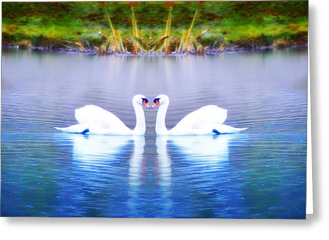 Swan Love Greeting Card by Bill Cannon